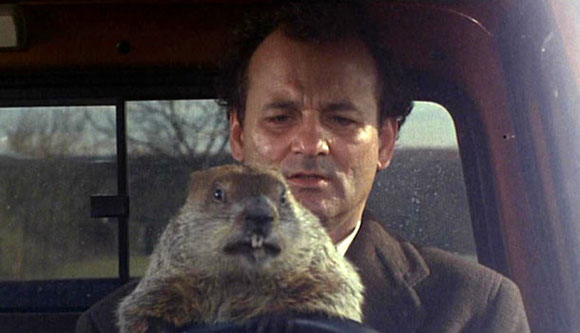 groundhog day, characters, comedy,