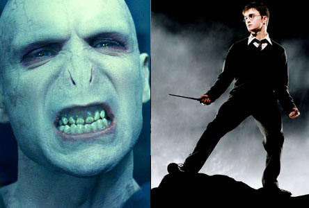 harry potter, voldemort, battle, war, revenge,