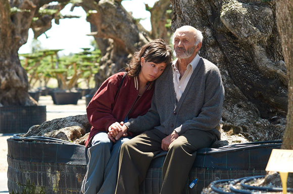 The Olive Tree sees Alma set off on a quixotic road trip across Europe to reclaim an ancient olive tree from its new corporate owners.