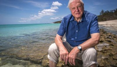 David Attenborough - free use