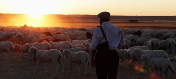"""The Shepherd"", ""Gozo"" and ""Zen Dog"" Are The Big Winners At This Year's Raindance Film Festival"