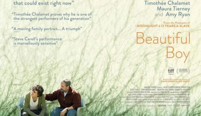 Beautiful Boy - Steve Carell