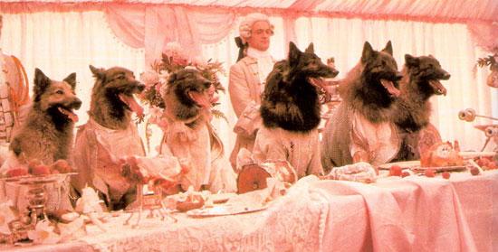 company of wolves, best werewolf film, werewolf movies