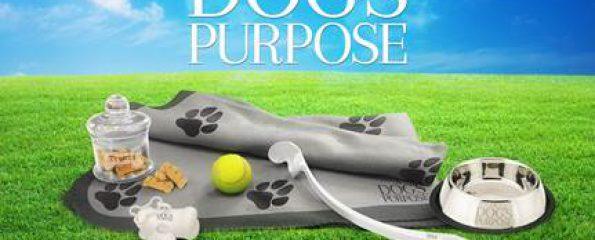 A Dog S Purpose Dvd Date Uk