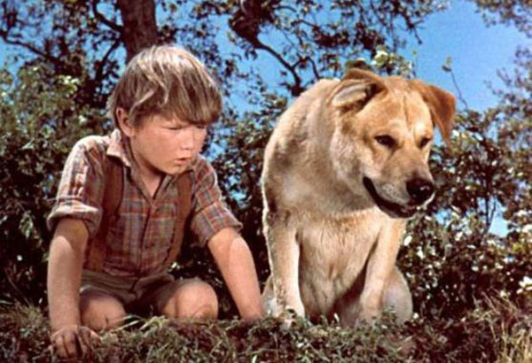 old-yeller_animal-tearjerkers