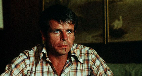 rolling thunder, william devane,