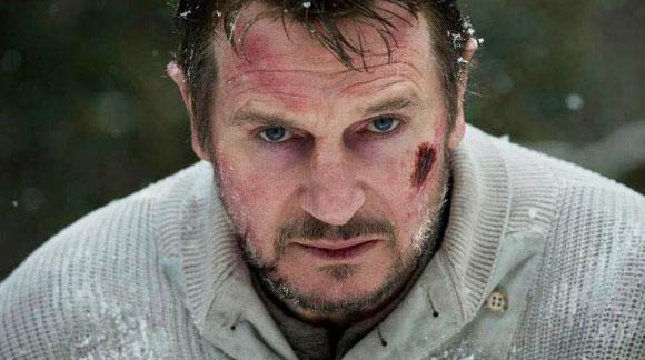 Liam Neeson, The Grey, Top 10 Films