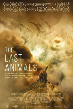 The Last Animals - Kate Brooks