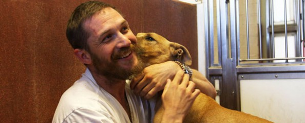 For The Love Of Dogs with Tom Hardy - Top 10 Films