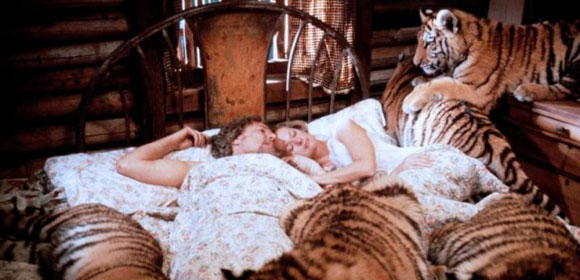 top 10 animal attack horror films top 10 films