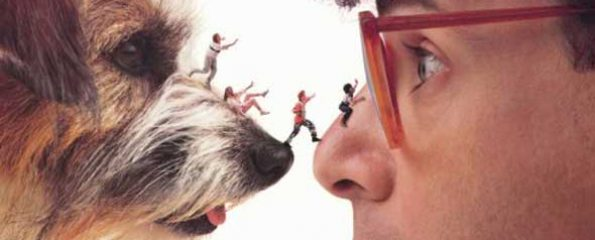 """Where Are They Now: The Cast Of """"Honey, I Shrunk The Kids"""" - Top 10 Films"""